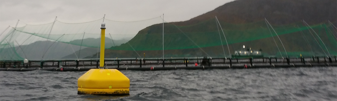 Yellow buoy in front of a fish farm