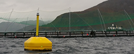 Yellow buoy in fron of fish farm