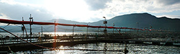 Fish farm surrounded by mountains