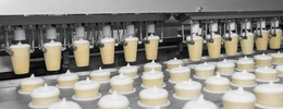 Ice cream processing line