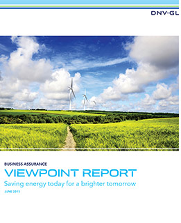 DNV GL ViewPoint survey on energy efficiency